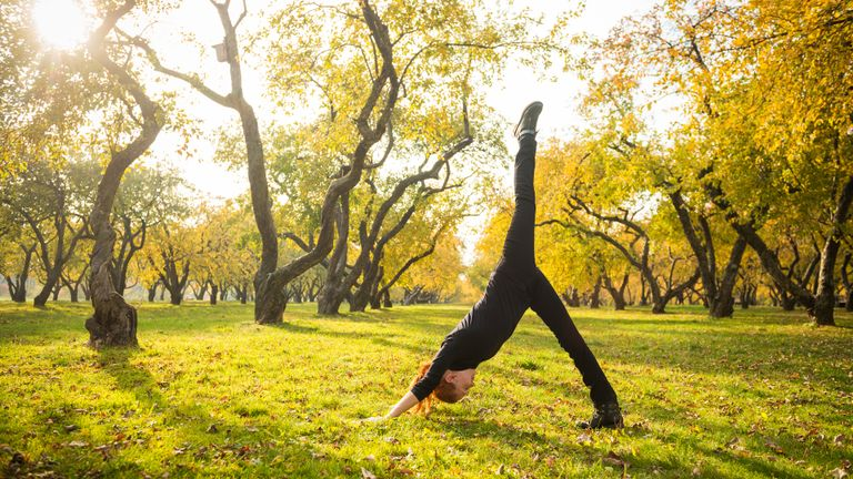 Calming Yoga Sequence to Transition into Fall