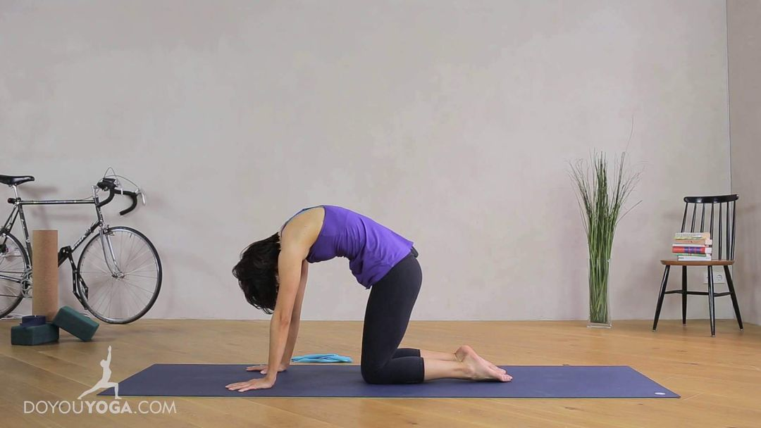 Arms Shoulders And Upper Back Level 1 Doyouyoga