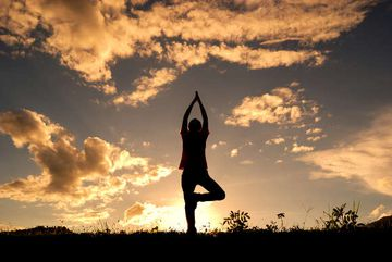 Yoga in Daily Life: Harmony of Mind, Body, and Soul