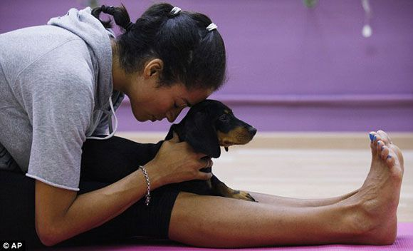 Why You Should Start Doing Yoga With Your Dog