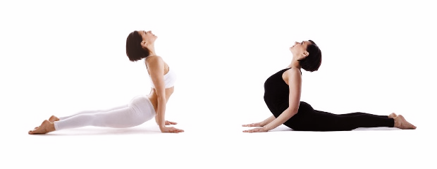 The Difference Between Upward-Facing Dog and Cobra Pose ...