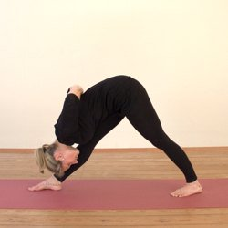 10 Yoga Poses to Relieve Sciatica Pain Fast