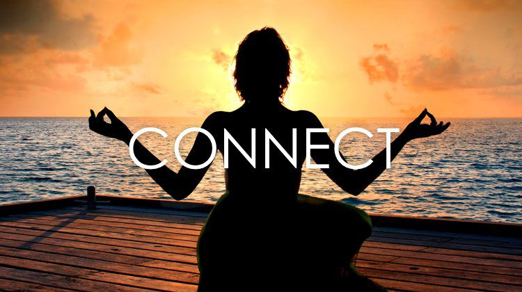 What The Kosha? How To Connect Holistically
