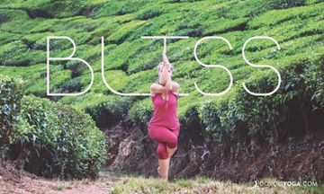 The 5 Elements Of A Blissful Yoga Practice