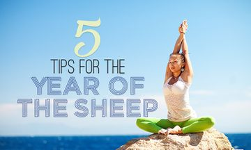 5 Tips For 2015: The Year Of The Sheep