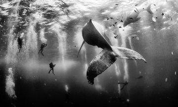 These NatGeo Photo Contest Winners Will Inspire Your Wanderlust