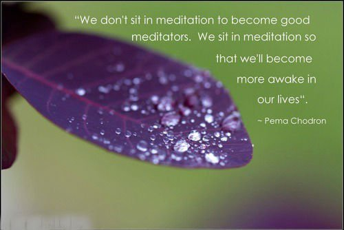 Pema Chodron Quotes | 15 Life Changing Quotes From Pema Chodron Doyouyoga