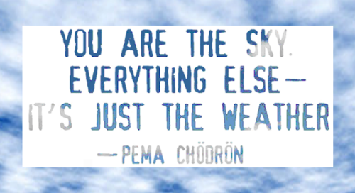 60 LifeChanging Quotes From Pema Chodron DOYOUYOGA Custom Pema Chodron Quotes