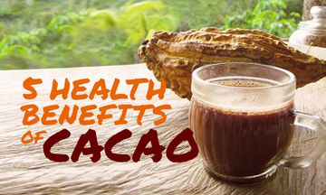 5 Health Benefits of Organic Cacao Nibs