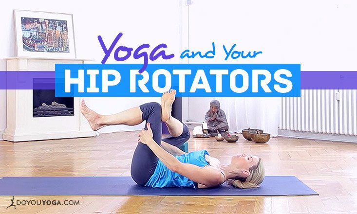 Yoga Anatomy- Understanding the Hip Rotators