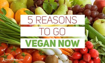 5 Reasons to Go Vegan Now