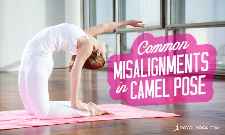 misalignments in camel pose