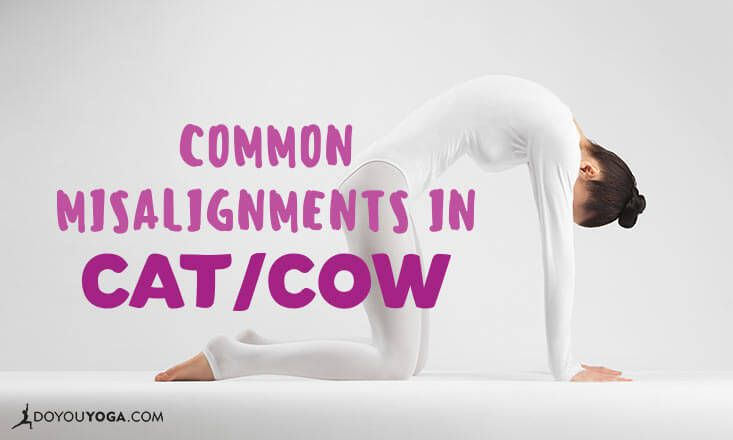 Common Misalignments in Cat/Cow (and How to Fix Them)