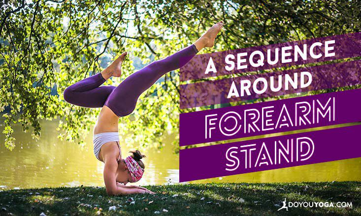 How to Build a Sequence Around Forearm Stand