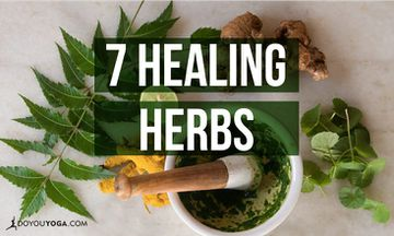 7 Healing Herbs You Should Have In Your Kitchen