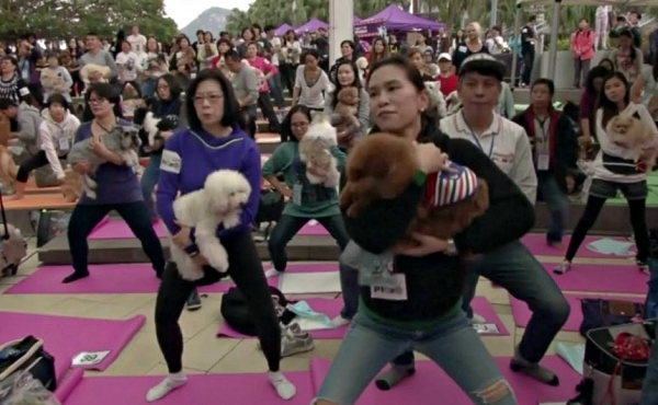 yoga world record-largest doga class